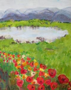 Dianes Pond II, 16 x 20