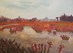 Orange Bog I, 30 x 40, SOLD